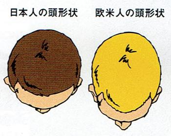 装着してのサイズチェック 日本人と欧米人の頭の形の違い