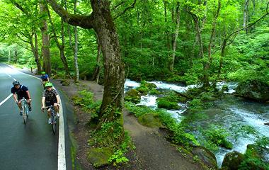 暑い日のサイクリングは涼しい山道や川沿いコースを選ぶ