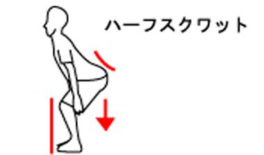 体幹トレーニングのハーフスクワット