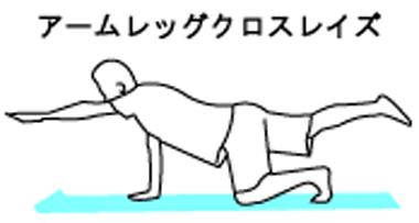 体幹トレーニングのアームレッグクロスレイズ