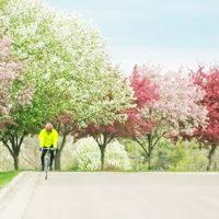 サイクリングのシーズン到来!春は自転車で出かけよう