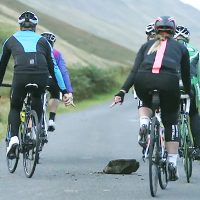 ロードバイクの集団走行で使うハンドサイン|自転車の手信号まとめ